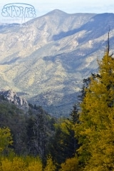 Fall Scenery on Mount Lemmon