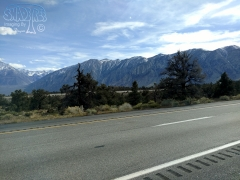 Drive By Scenery