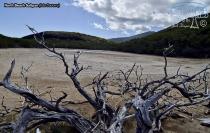 Saltpan Behind The Mangroves