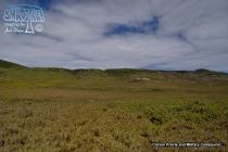 Clarion Prairies