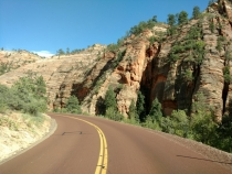 Driveby Scenery In Zion National Park