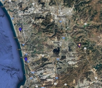 Allen's Hummingbird Location Map