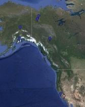 Mew Gull Location Map
