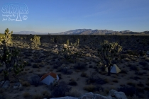 Scenery Near Camp at Daybreak