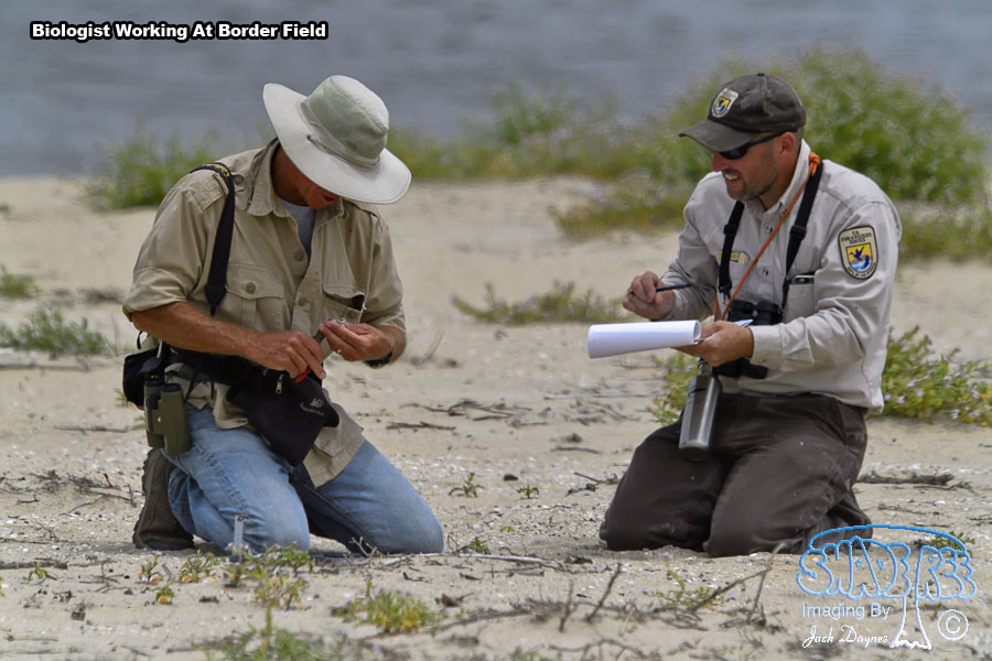 Biologists At Work - n/a