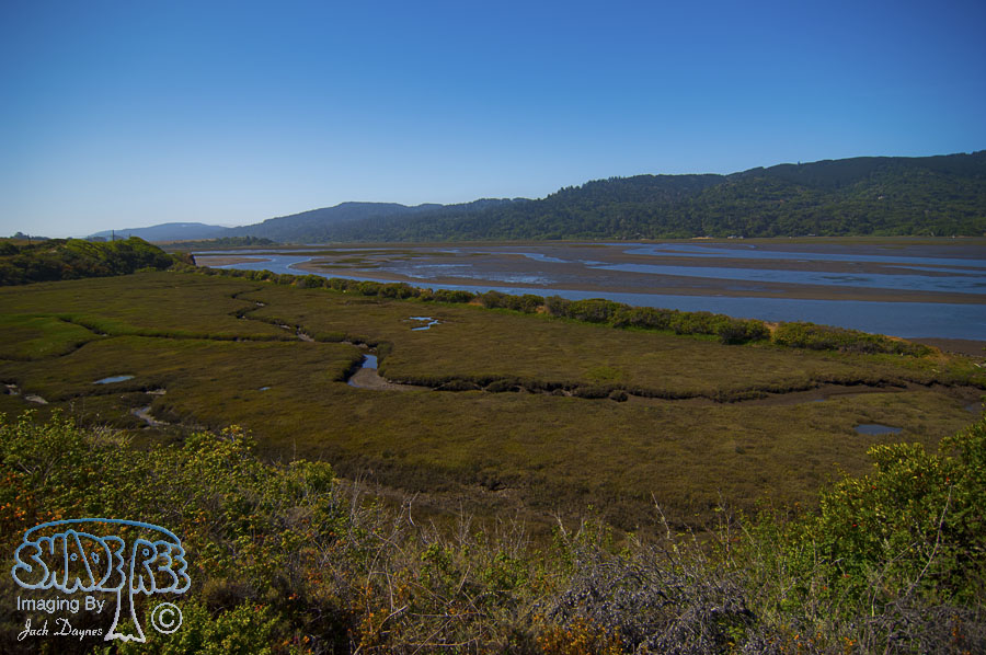 Scenery - Tomales Bay