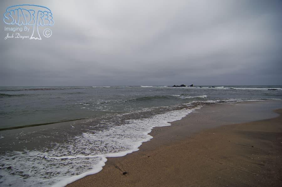 Scenery - Maverick Beach