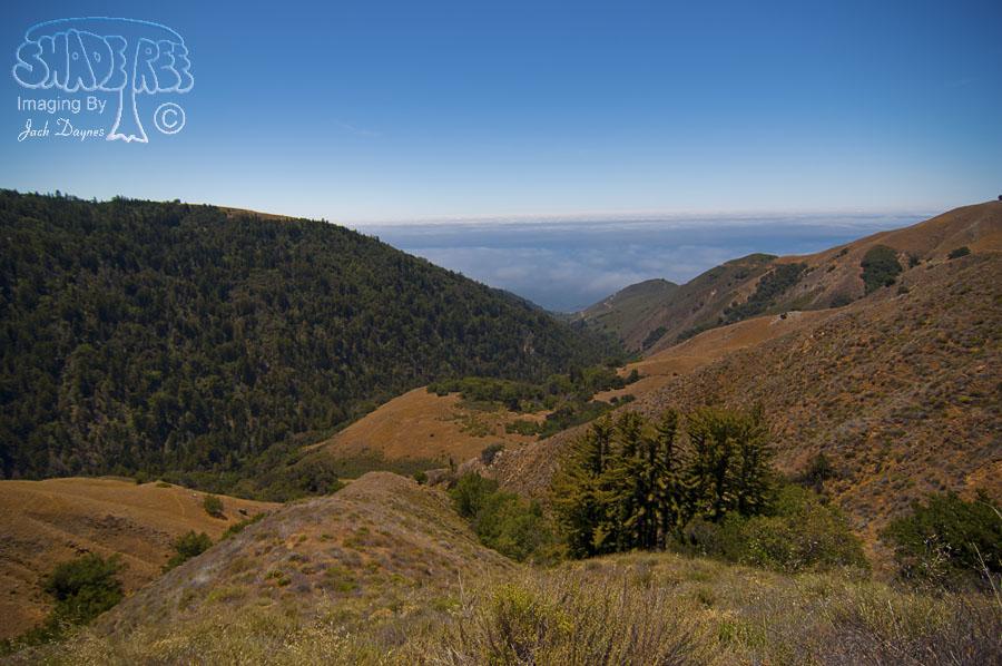 Scenery - Nacimiento-Fergusson Road