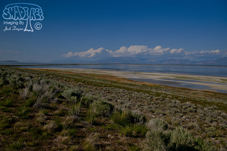 Scenery at Antelope Island - n/a