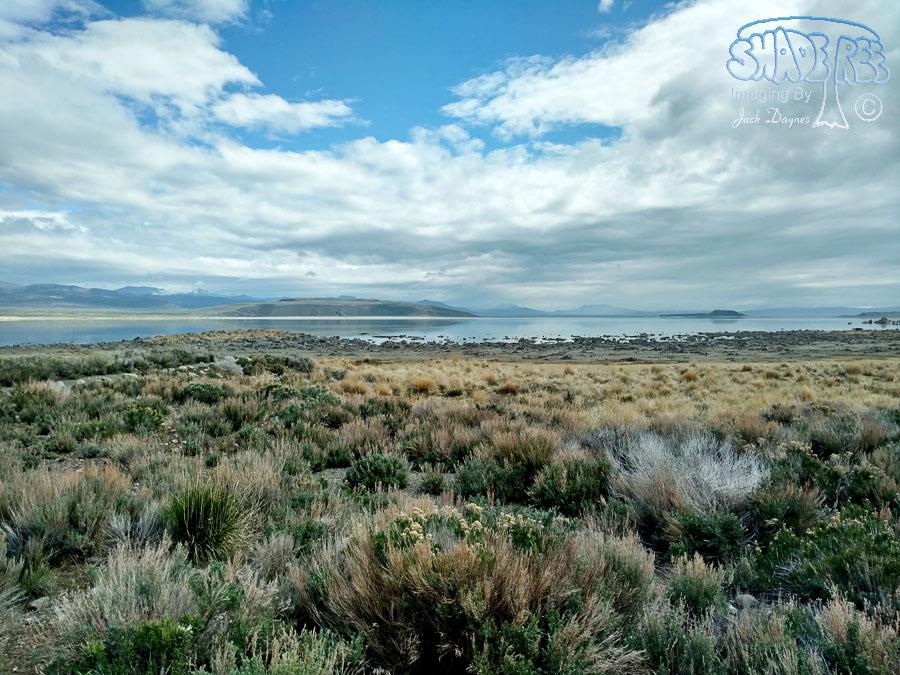 Mono Lake Vista - n/a