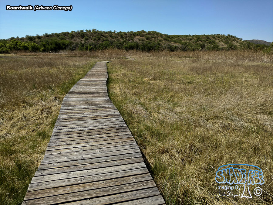 Boardwalk - Arivaca Cienega
