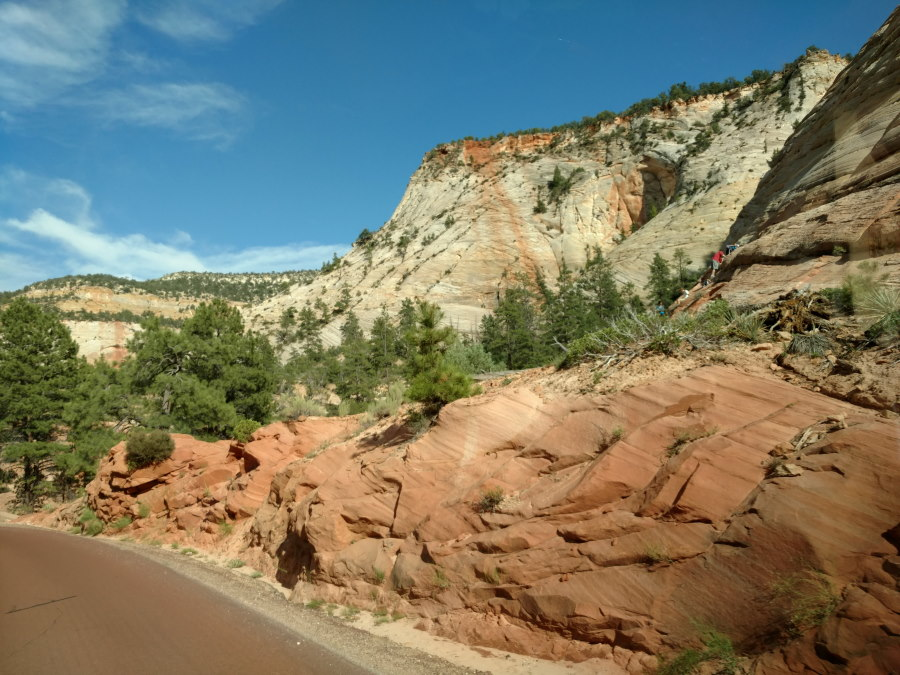 Driveby Scenery In Zion National Park - Scenery