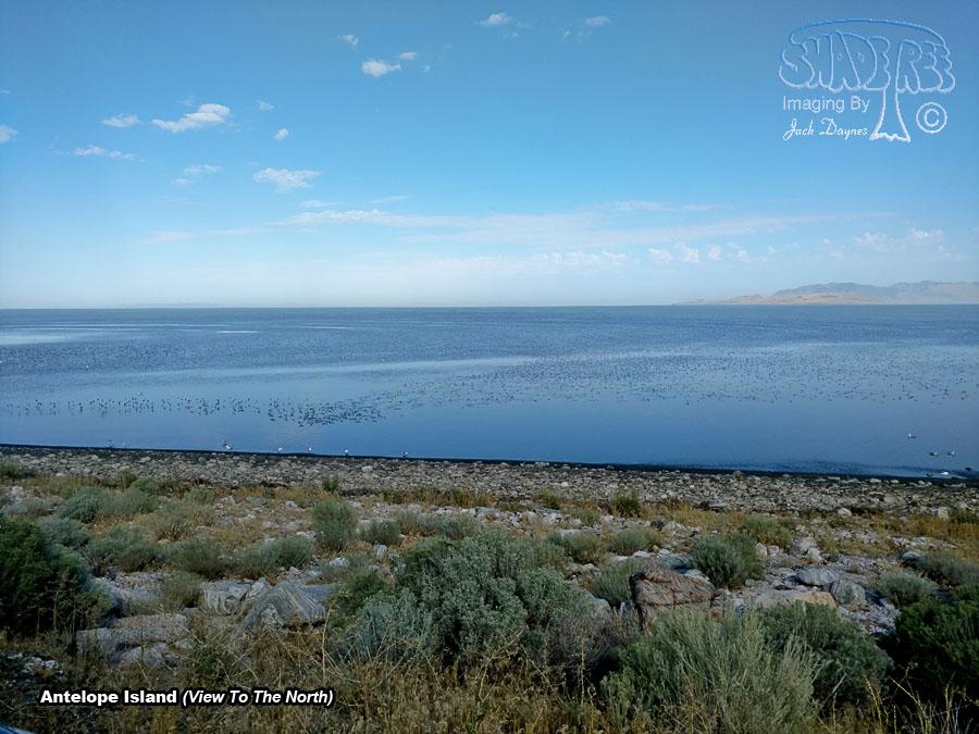 Antelope Island - Scenery