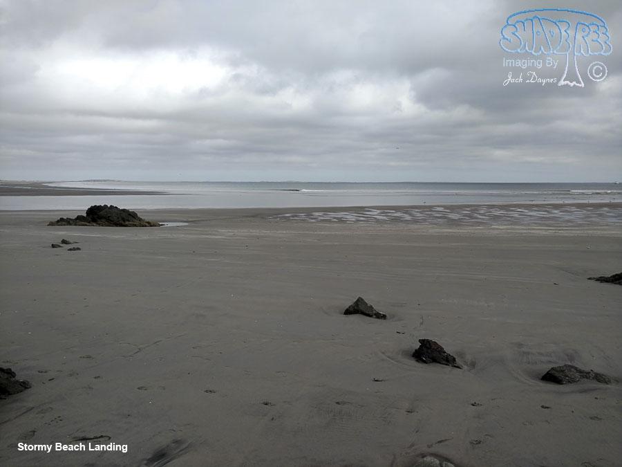 The Beach Landing - n/a