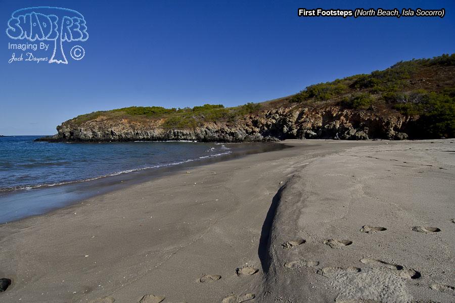 On North Beach - Isla Socorro