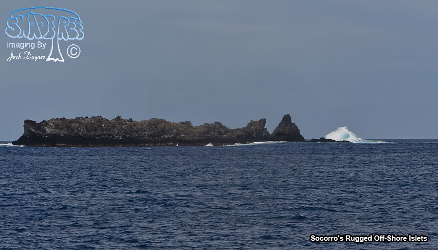 Socorro's Rugged Off-Shore Islets - n/a
