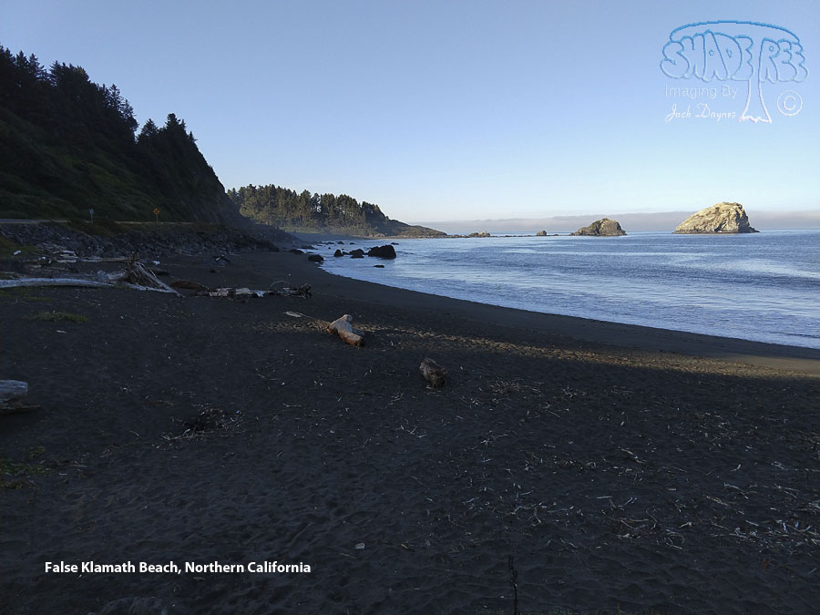Beach at False Klamath - Scenery