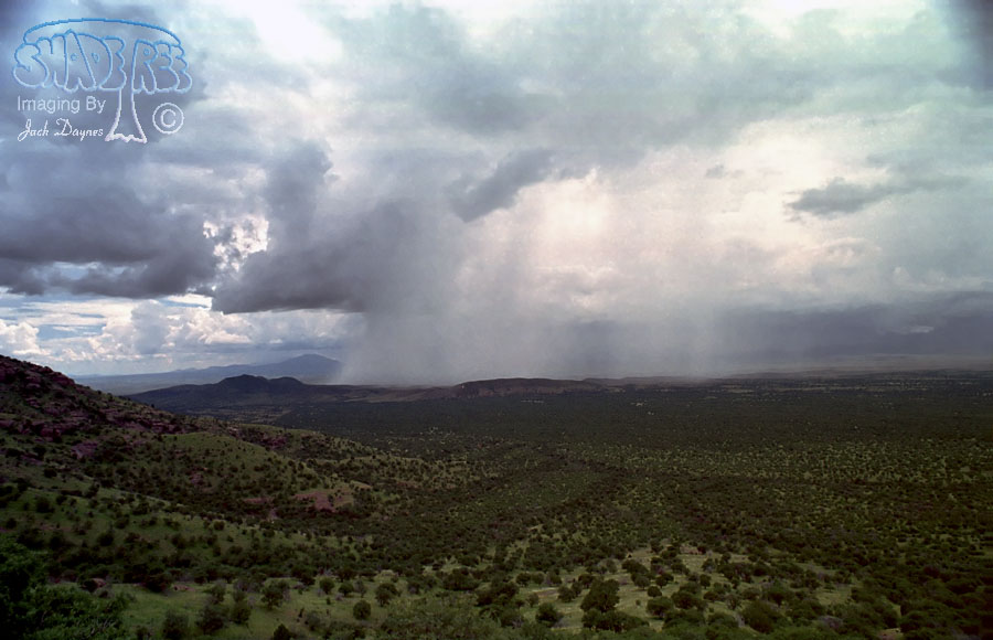 Arizona Monsoon Rain - Scenery