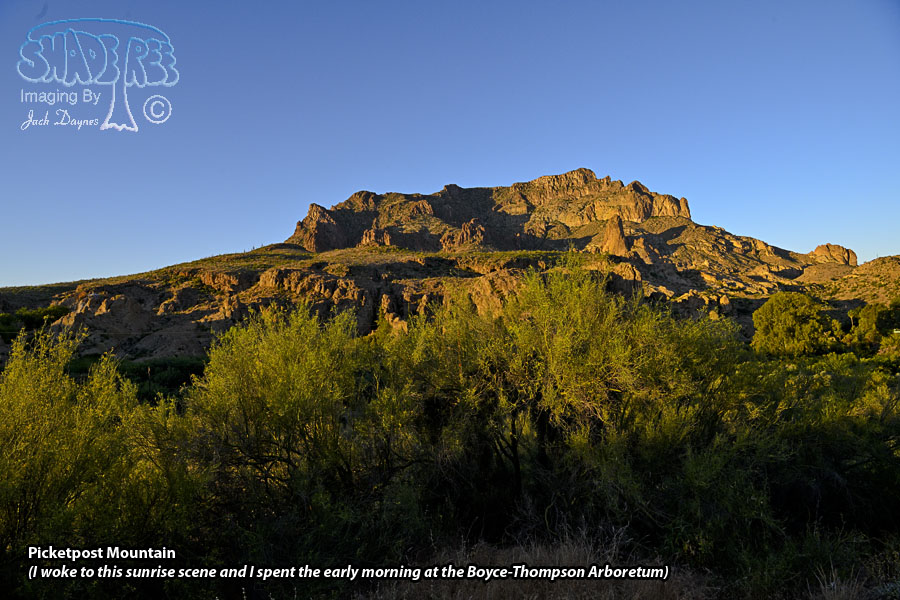 Picketpost Mountain - Scenery