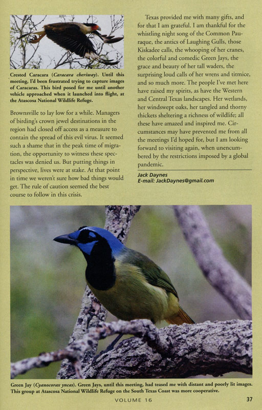 Page 37 - Last page of article