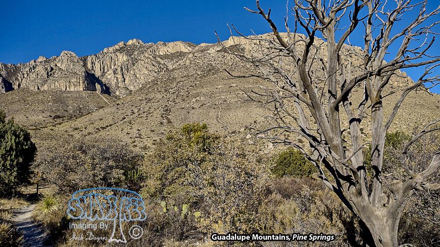 Pine Springs - Scenery